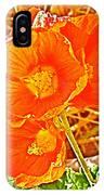 Apricot Globemallow In Vermilion Cliffs National Monument-arizona IPhone Case