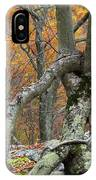 Arboreal Architecture IPhone Case