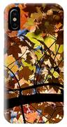 Arboretum Fall IPhone Case