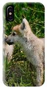 Arctic Wolf Pictures 347 IPhone Case