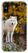 Arctic Wolf Pictures 709 IPhone Case