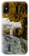Arctic Wolf Pictures 930 IPhone Case