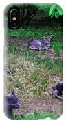 Argentina Cat Park IPhone Case