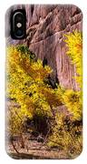 Arizona Autumn Colors IPhone Case