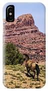 Arizona Beauties IPhone Case