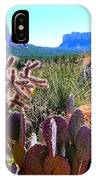 Arizona Bell Rock Valley N4 IPhone Case