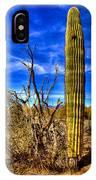 Arizona Landscape IIi IPhone Case