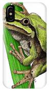 Arizona Tree Frog IPhone Case
