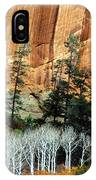 Arizona's Betatkin Aspens IPhone Case