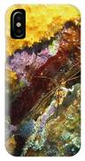 Arrow Crab In A Rainbow Of Coral IPhone Case