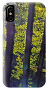 Art In The Woods IPhone X Case