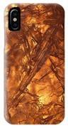 Art Of Ice 4 IPhone Case