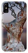 As Night Settles IPhone Case