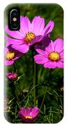 Asheville Wildflowers IPhone Case