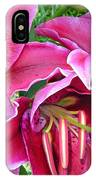 Asian Lily Flowers IPhone Case