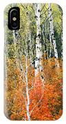 Aspen And Maple Trees In Autumn IPhone Case
