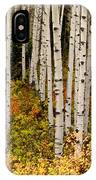 Aspen Panoramic IPhone Case