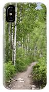 Aspen Path IPhone Case
