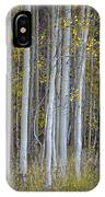 Aspen Stand IPhone Case