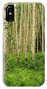 Aspen Summer IPhone Case