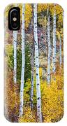 Aspen Tree Magic IPhone Case
