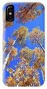 Aspen Tree Tops IPhone Case