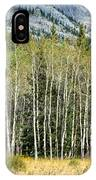 Aspen Trees Along The Bow Valley IPhone Case