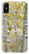 Aspen Trees Covered With Snow IPhone Case