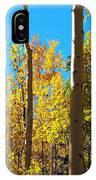 Aspen Trees In Fall IPhone Case