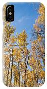 Aspen Trees In The Fall IPhone Case