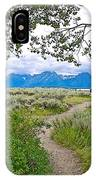 Aspen Trees On Trail To Jackson Lake At Willow Flats Overlook In Grand Teton National Park-wyoming  IPhone Case
