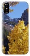 Aspen Viewing IPhone Case