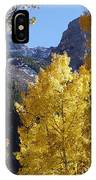 Aspen Window IPhone Case