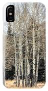 Aspens 2 IPhone Case