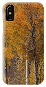 Aspens Ablaze IPhone Case