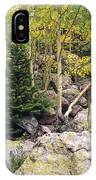 Aspens From Rocks IPhone Case