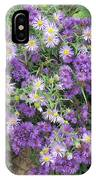 Asters Light And Dark IPhone Case