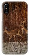 At The Edge Of The Woods IPhone Case