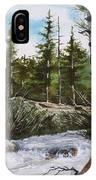 At The Top Of Alberta Falls IPhone Case