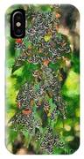 At The Valley Of Butterflies In Rhodes Island IPhone Case