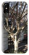 Atlanta Tree IPhone Case