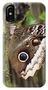 Atreus Owl Portrait  Costa Rica IPhone Case