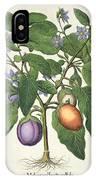 Aubergine Melanzana Fructu Pallido IPhone Case