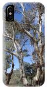 Australian Native Tree 12 IPhone Case
