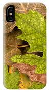 autumm is coming 3 - A carpet of autumn color leaves IPhone Case