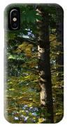 Autumn 10 IPhone Case