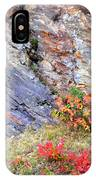 Autumn And Rocks Vertical IPhone Case
