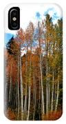 Autumn Aspens IPhone Case