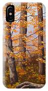 Autumn At Tishomingo State Park IPhone Case