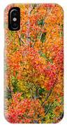 Autumn Outbeats Summer IPhone Case